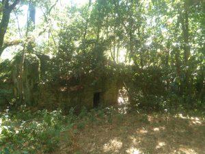 Viviendas abandonadas en Cortegada