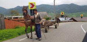 Camino a Brasov