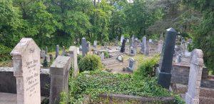 Cementerio alemán de Sighișoara
